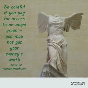 Be Careful Paying For Angel Groups