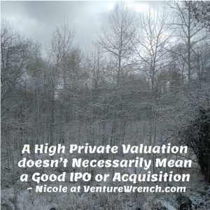 A High Private Valuation Isn't Enough